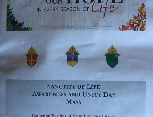 Sanctity of Life Awareness and Unity Day Mass
